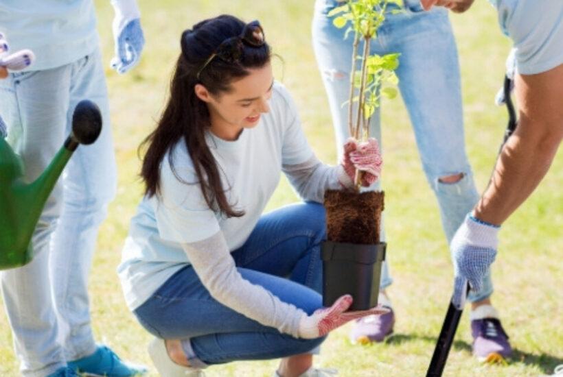 planting a community garden