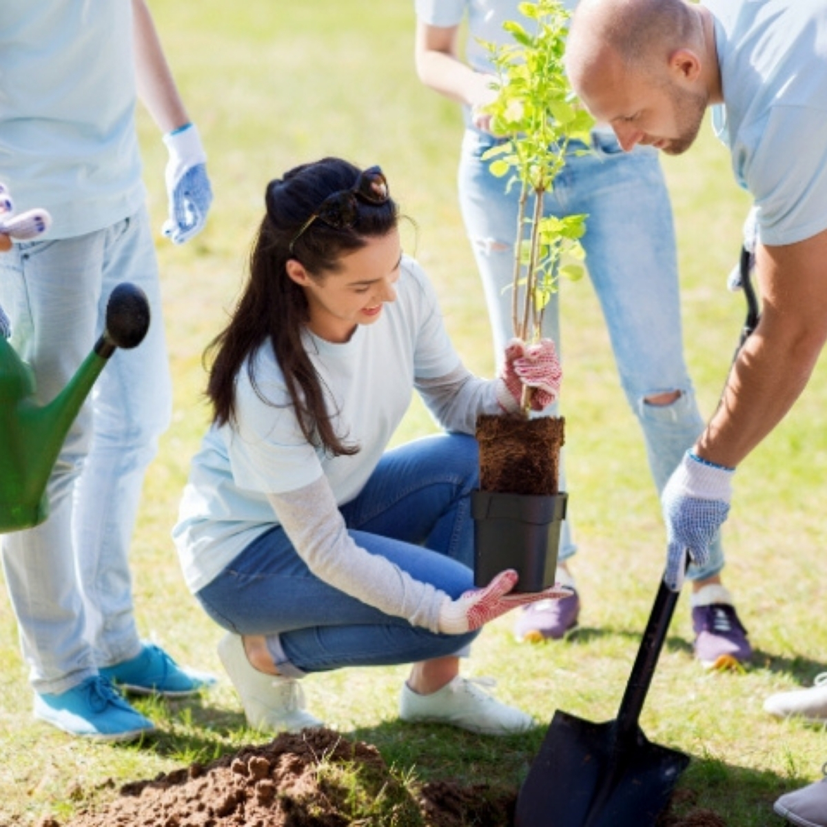 How to Volunteer: Ways to Get Involved in the New Year